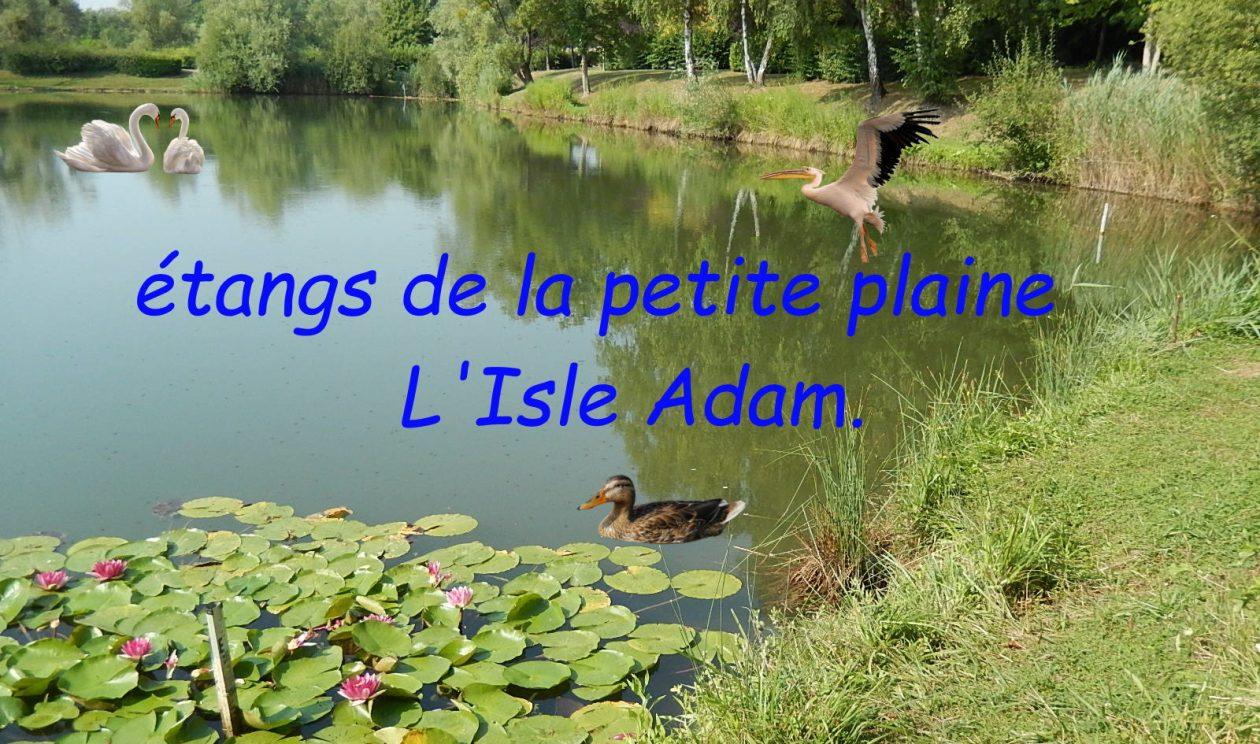 Etangs de la Petite Plaine.